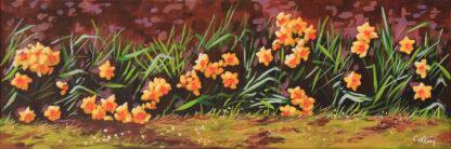 Les jonquilles jaunes Clévilliers